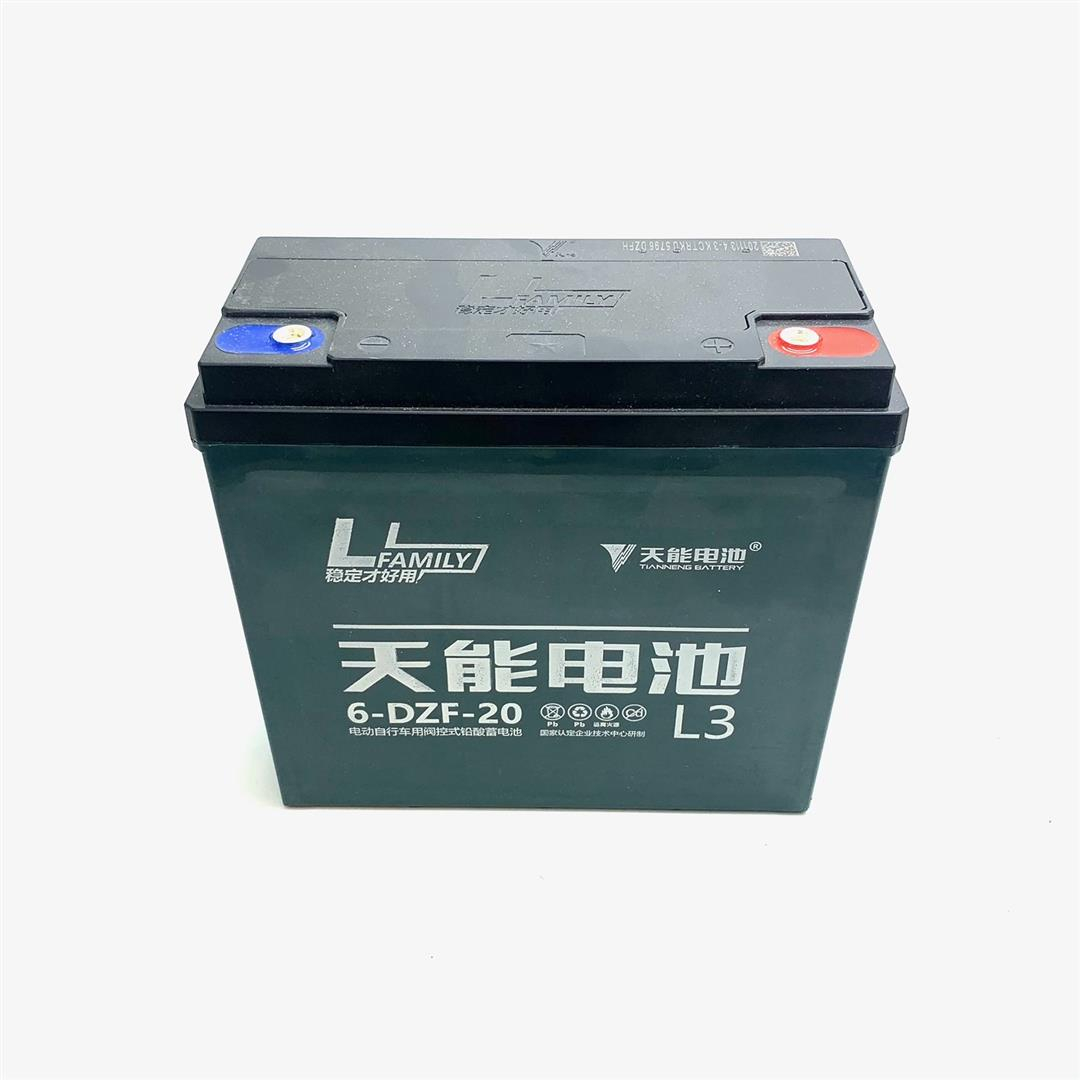 Battery (12V 20AH) - Mud Monster