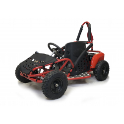 Electric Quads & Kart Deals