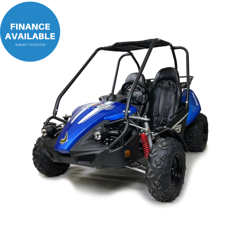 Hammerhead™ GTS150 Buggy with USA Specs - Blue