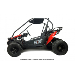 Hammerhead™ GTS150 Buggy with USA Specs - Red
