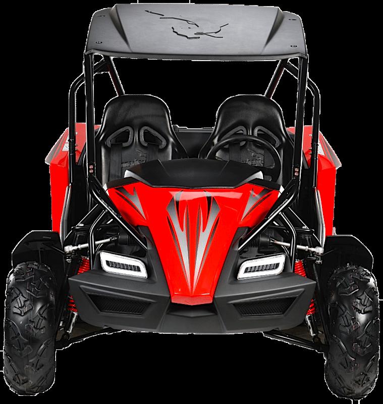 Hammerhead™ GTS150 LE Off Road Buggy
