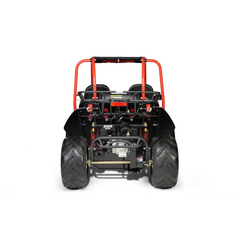 Hammerhead™ GTS150 Platinum 'Special Edition' Buggy