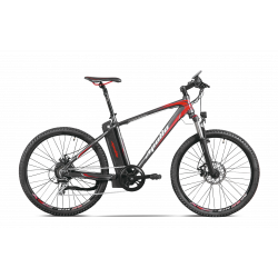 Passion 16 Electric Mountain Bike