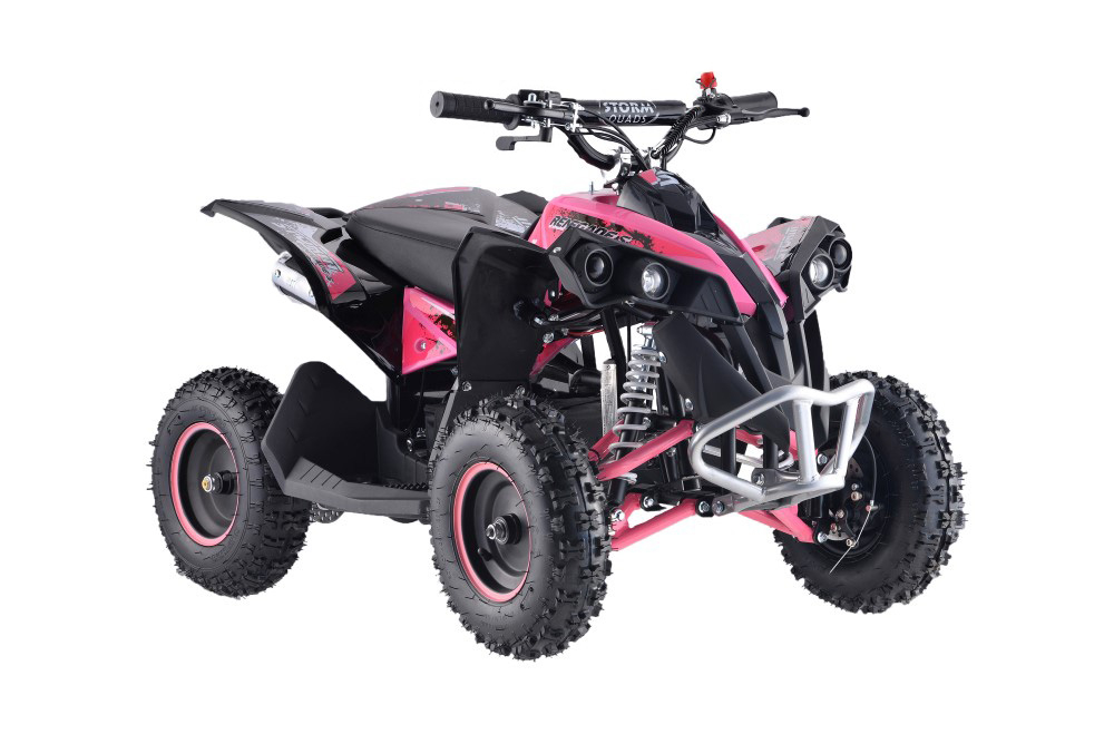 50cc Renegade Mini Petrol Quad Bike