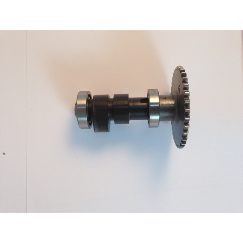 Valve Cam Unit  Axis  Bearing And Chain Pulley For 250cc